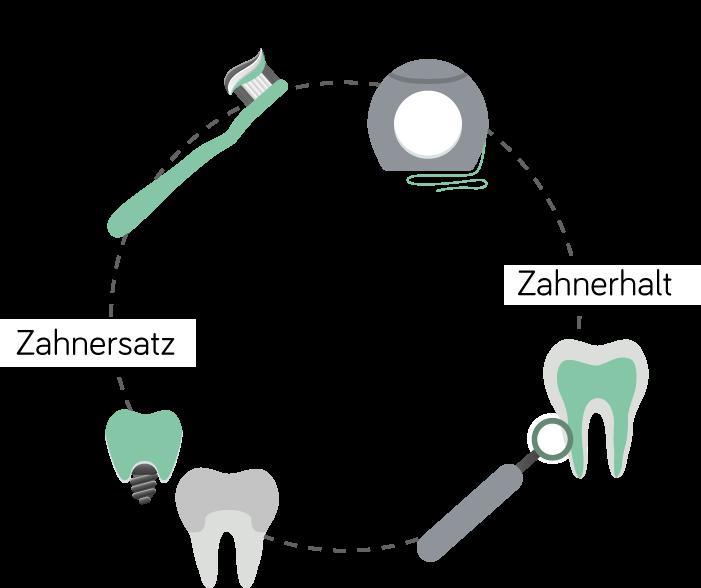 Zahnärztin Velbert - Dr. Freytag - Kreislauf zum Zahnerhalt